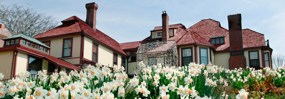 Highfield-in-the-Spring-Banner-Image