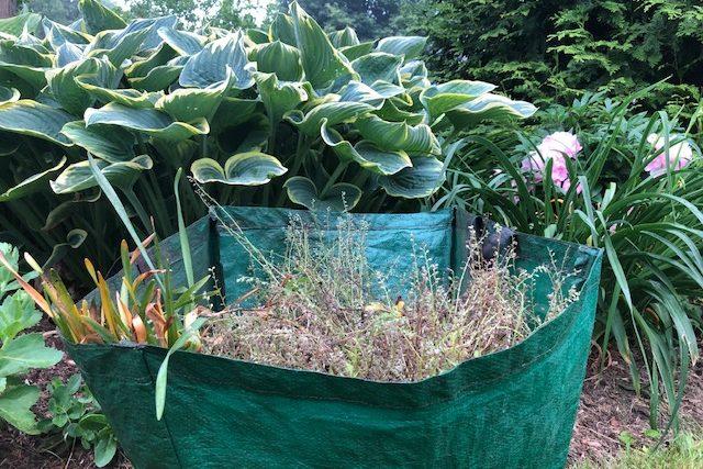 Garden Tip 14