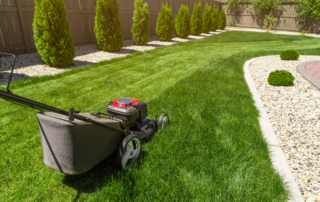 Garden Tip 10_2020
