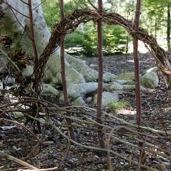 Woodland..._Wendy Bagley