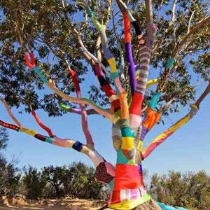 dream-trees-icon